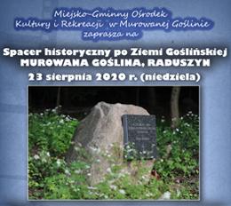 Spacer historyczny po Ziemi Goślińskiej - Murowana Goślina, Radoszyn