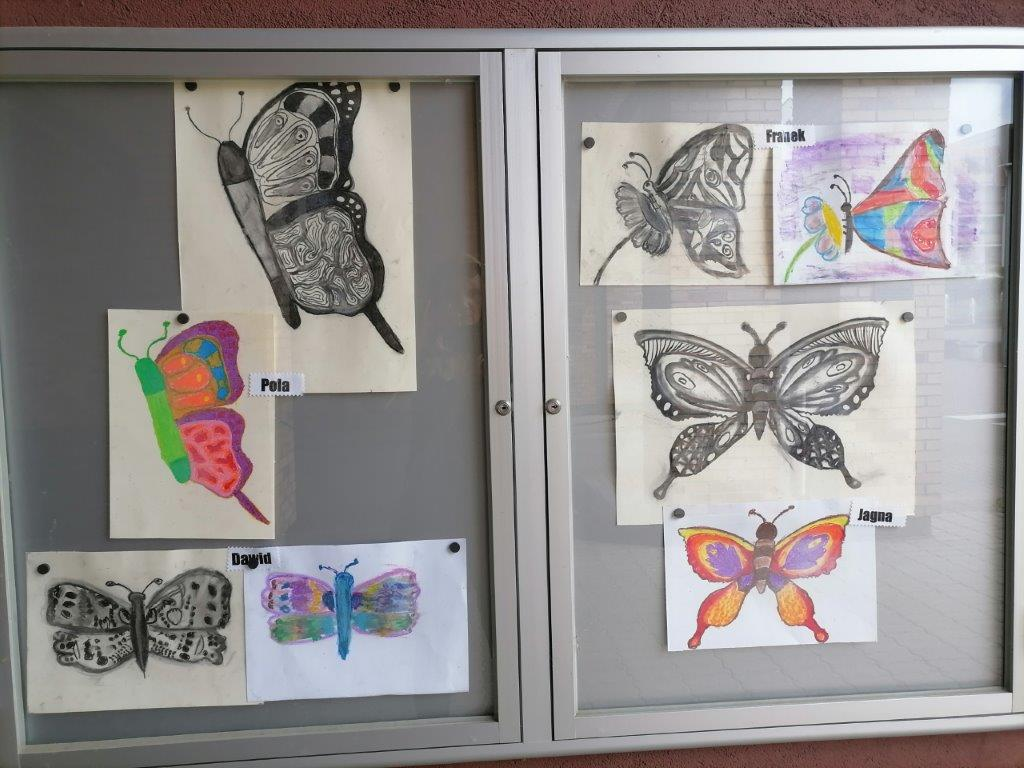 Prace dzieci przedstawiające barwne i czarno białe motyle