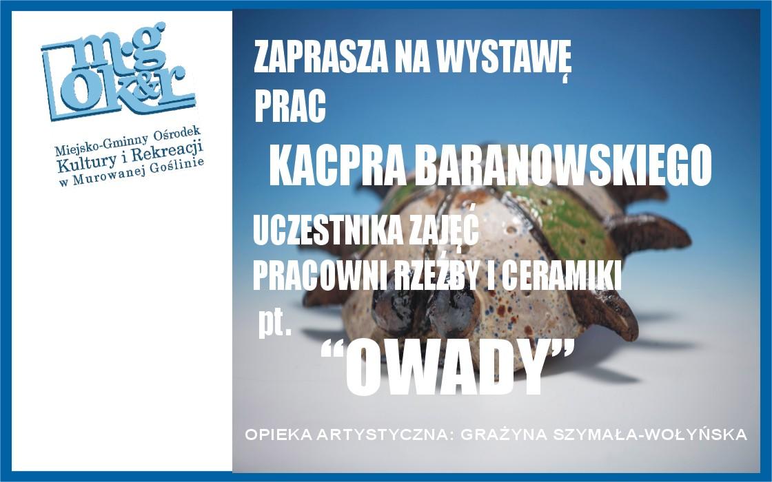 banerek WWW.jpg kacper baranowski